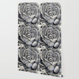 Sumptuous Succulent Wallpaper