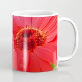 Red Gerbera Daisies WC Coffee Mug
