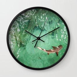 Look at the Shark Wall Clock