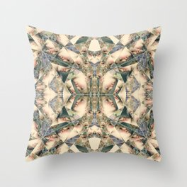 07 Throw Pillow