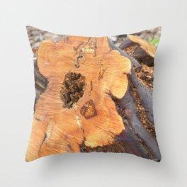 TEXTURES - Manzanita in Drought Conditions #2 Throw Pillow