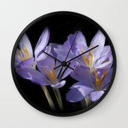 lilac crocusses on black Wall Clock