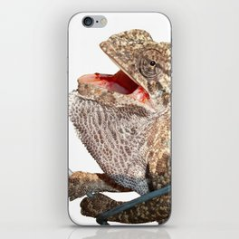 A Chameleon With Open Mouth Isolated iPhone Skin