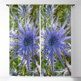 A thistle with style Blackout Curtain
