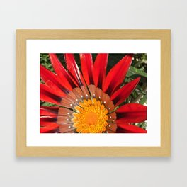 perfection Framed Art Print