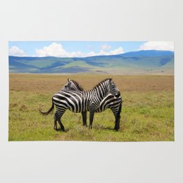 Striking Stripes  Rug
