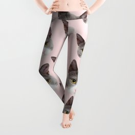 girly cute pink pattern snowshoe cat Leggings
