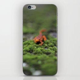 Coming For You - Orange Salamander iPhone Skin