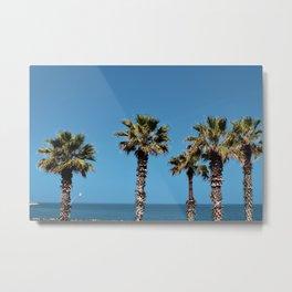 Palms in Bari Metal Print