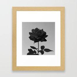 -Vibrant Darkness Framed Art Print