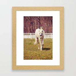 Horse 2012 Framed Art Print