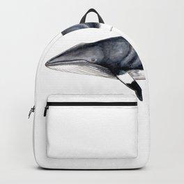 Minke whale Backpack