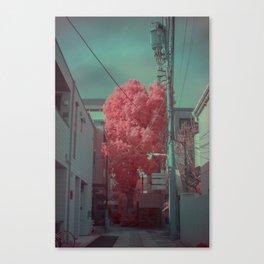 Infrapink 01 Canvas Print