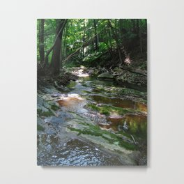 Woodland Stream--Landscape Photography Prints Metal Print