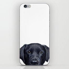 Labrador with white background Dog illustration original painting print iPhone Skin