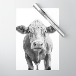 Highland Cow Portrait | Animal Photography | Black and White | Art Print Minimalism | Farm Animal Wrapping Paper