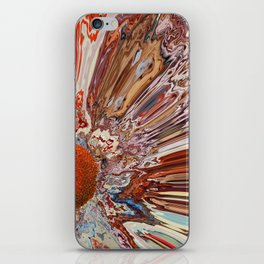 Colorful Abstract Flower iPhone Skin