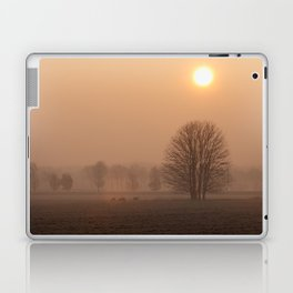 Early morning in a clearing Laptop & iPad Skin