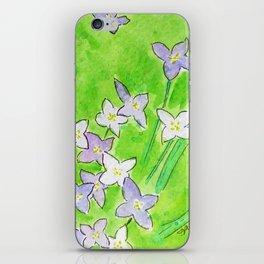 Innocence (Bluets, Quaker-Ladies) iPhone Skin