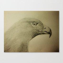 eagle, natural Canvas Print
