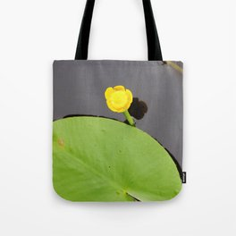 Yellow waterlily with lily pad Tote Bag