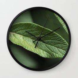 Sage Leaf Wall Clock