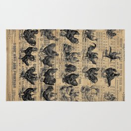 Vintage Chicken Study from 1895 Dictionary on Lancaster, PA antique almanac page Rug