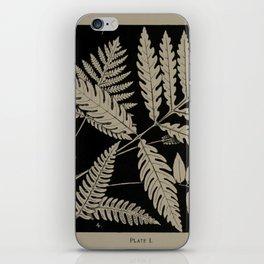 New England Ferns iPhone Skin