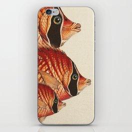 Fish Classic Designs 2 iPhone Skin