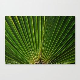 life green Canvas Print