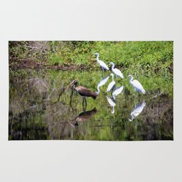 Egrets And Ibis Rug