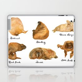 the furnished walrus Laptop & iPad Skin