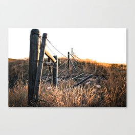 Fence in Color Canvas Print