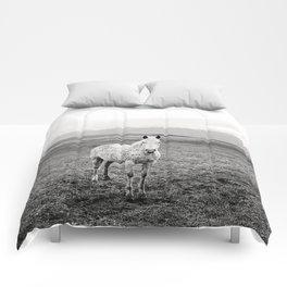 Appaloosa Horse | Western Art Comforters
