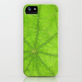 Green Leaf Veins 03 iPhone Case