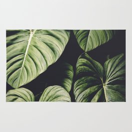 Monstera - Tropical Forest - nature photography Rug