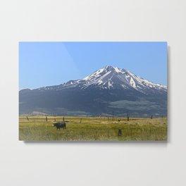 Shasta Pastorale No. 2 Metal Print