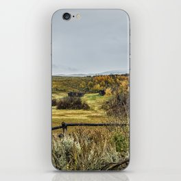 Who Needs A Roof Over Their Head iPhone Skin