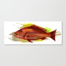 """American Red Snapper """"American Red"""" Canvas Print"""