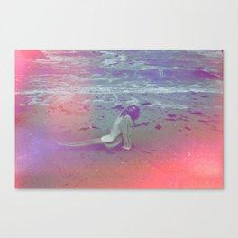 Superposition  Canvas Print