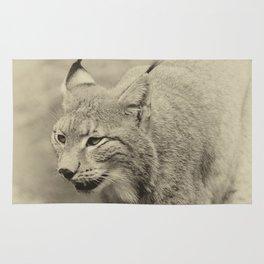 beautiful lynx Rug
