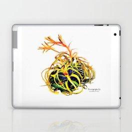 Tillandsia Xerographica Air Plant Watercolor Laptop & iPad Skin