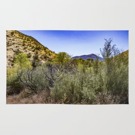 Fresh Green Plants Growing Near Underground Water by the Mountains in the Anza Borrego Desert Rug