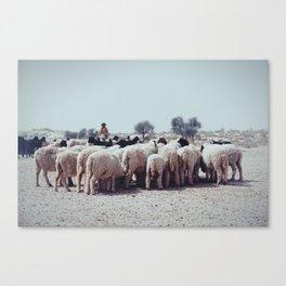 Shepherd and Flock Canvas Print