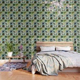 Best Nine :  Mustelids of Spain Wallpaper