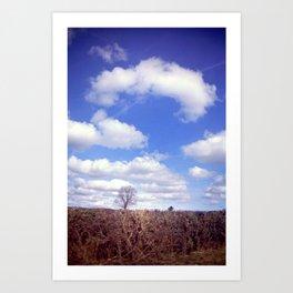 Yorkshire Tree Art Print