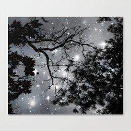 Starry Night Sky Canvas Print