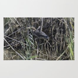 Green Heron Rug