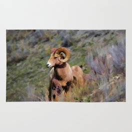 Rocky Mountain Bighorn Sheep Rug