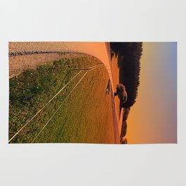 Hiking trip in summer time | landscape photography Rug
